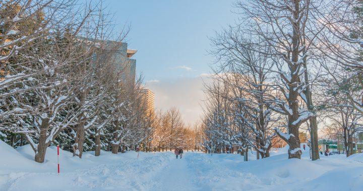 アールズ株式会社冬季休業のお知らせ